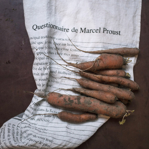 [재입고] French Linen Kitchen Cloth (Marcel Proust)